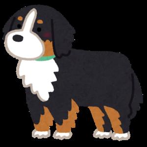 大型犬 骨壷サイズ ゴールデンレトリーバー バーニーズ