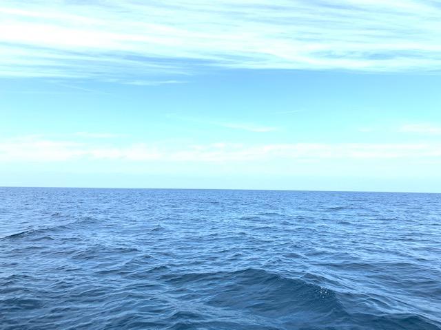 沖縄 海 散骨